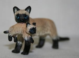 Сиамская кошка с котёнком