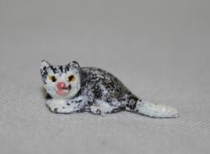 Серый котёнок с белым хвостом и мордочкой